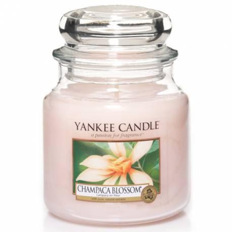 Yankee Candle Jar Glaskerze mittel 411g Champaca Blossom