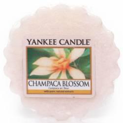 Yankee Candle Tart / Melt Champaca Blossom