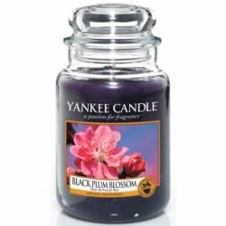 Yankee Candle Jar Glaskerze groß 623g Black Plum Blossom