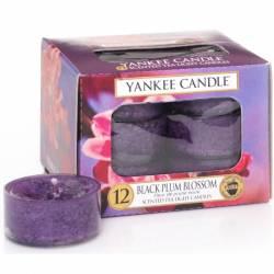 Yankee Candle Teelichter 12er Pack Black Plum Blossom