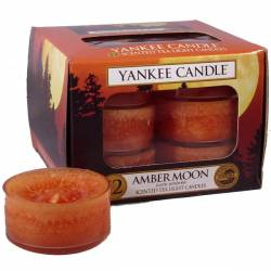 Yankee Candle Teelichter 12er Pack Amber Moon