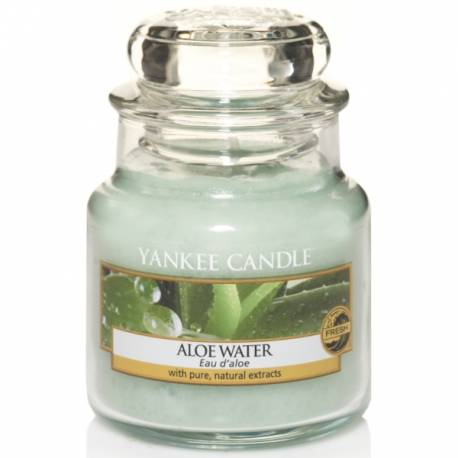 Yankee Candle Jar Glaskerze klein 104g Aloe Water