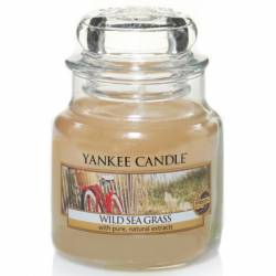 Yankee Candle Jar Glaskerze klein 104g Wild Sea Grass