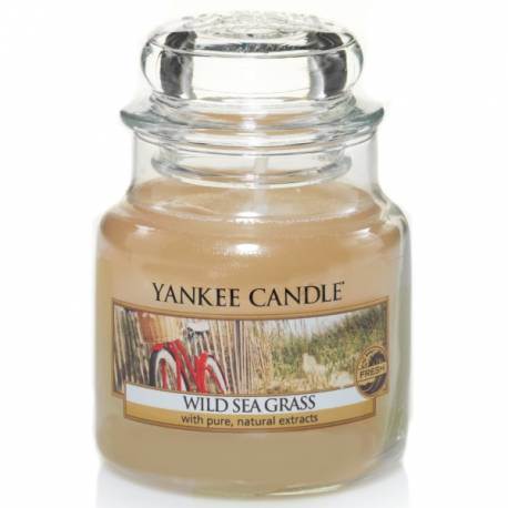 Yankee Candle Jar Glaskerze klein 104g Wild Sea Grass