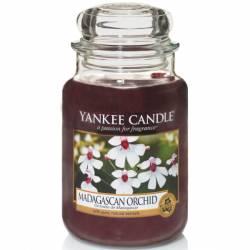 Yankee Candle Jar Glaskerze groß 623g Madagascan Orchid