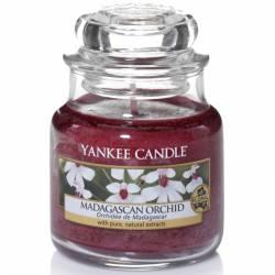 Yankee Candle Jar Glaskerze klein 104g Madagascan Orchid