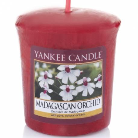 Yankee Candle Sampler Votivkerze Madagascan Orchid