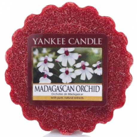 Yankee Candle Tart / Melt Madagascan Orchid