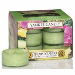 Yankee Candle Teelichter 12er Pack Pineapple Cilantro