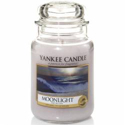 Yankee Candle Jar Glaskerze groß 623g Moonlight