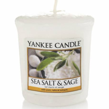 Yankee Candle Sampler Votivkerze Sea Salt & Sage