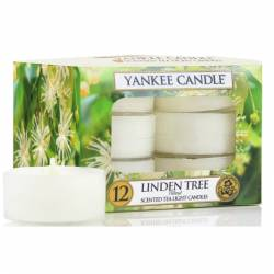 Yankee Candle Teelichter 12er Pack Linden Tree