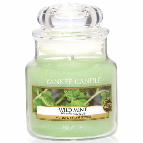 Yankee Candle Jar Glaskerze klein 104g Wild Mint