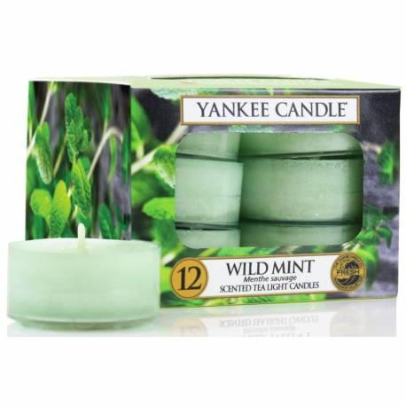 Yankee Candle Teelichter 12er Pack Wild Mint
