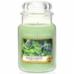 Yankee Candle Jar Glaskerze groß 623g Wild Mint