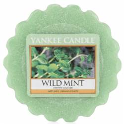 Yankee Candle Tart / Melt Wild Mint