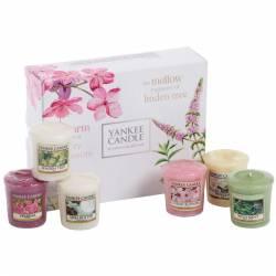 Yankee Candle Geschenk-Set Pure Essence Sampler / Votive 6er