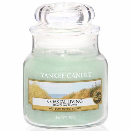 Yankee Candle Jar Glaskerze klein 104g Coastal Living