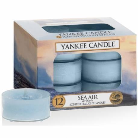 Yankee Candle Teelichter 12er Pack Sea Air