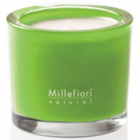 Green Fig & Iris Millefiori Natural Glas Kerzen 180 g