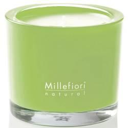 Fiori d´Orchidea Millefiori Natural Glas Kerzen 180 g