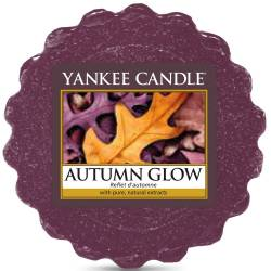 Yankee Candle Tart / Melt Autumn Glow