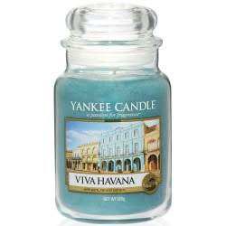 Yankee Candle Jar Glaskerze groß 623g Viva Havana