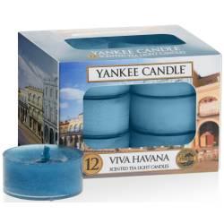 Yankee Candle Teelichter 12er Pack Viva Havana