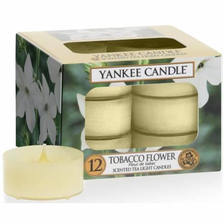 Yankee Candle Teelichter 12er Pack Tobacco Flower