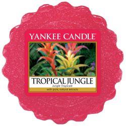 Yankee Candle Tart / Melt Tropical Jungle