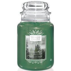 Yankee Candle Jar Glaskerze groß 623g Evergreen Mist