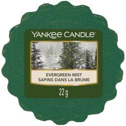 Yankee Candle Tart / Melt Evergreen Mist